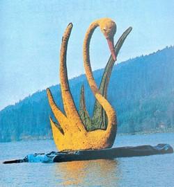 Sujet fixe sur le lac